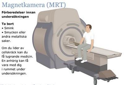 MRT.3